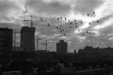 2005-11309 Overzicht op een gedeelte van de Provenierswijk en de bouw van kantoorflats aan het Weena. Op de achtergrond ...