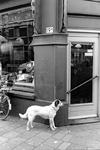 2005-9639 De Jacob Loisstraat ter hoogte van bakkerij Degenkamp.