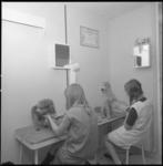11812 Twee meisjes kammen twee poedels in een hondentrimsalon.