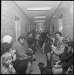 11815 Drukte in de wachtkamer van de dierenarts in het dierenasiel.