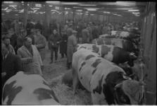 20011-49-12 93e Paasveetentoonstelling op de terreinen van de Veemarkt.