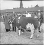 4076-3 Commissaris der koningin mr. J. Klaasesz (tweede van links) en wethouder J.U. Schilthuis (rechts) op de veemarkt ...