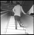 7281 Een dame met sierkousen op de roltrap van een warenhuis.