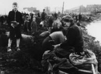 1977-3302 Het zoeken van kolen op een terrein in de buurt van de gasfabriek Kralingen. Op de achtergrond huizen aan de ...