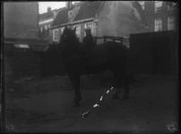 2007-2565-16 Een paard op de wagenplaats van de firma Tromp en Rueb, Azijnmakerij 'De Dubbele Grieksche A' aan de ...