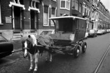 1976-1255 Kar getrokken door een pony voor de bezorging van zuivel. Eigenaar is Poelier- en Zuivelhandel M. Berkhout te ...