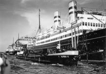 FD-3136 Rijnmotorboot Alpina en een aantal ander stoomschepen in de haven.