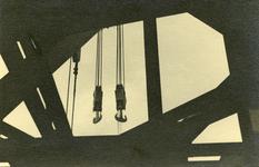 FD-3182 Een detailfoto van een drijvende bok.