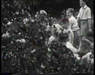 BB-4119 Vervaardigd voor Rotterdam TV (Herman Dekker). Fragmenten uit eigen collectie, Vakantievreugd! BB-0875, De ...