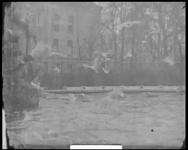 BB-7481 Bezoek aan de oude diergaarde (Diergaardesingel). Voeren van meeuwen.