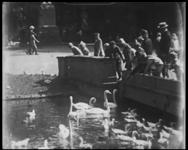 BB-7489 Het Park met zwanen en het beeld van Tollens. Opnames vanaf de Parkheuvel naar de Maashaven. De kades staan vol ...