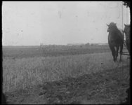 BB-7499 Landbouw in Zeeland: ploegen en zaaien. Jaantje Spoel-Kleppe probeert de aandacht te trekken van een onbekend ...