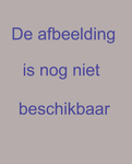 PW-456 Profieltekeningen van de verzakking van het terrein van de Rijnspoorweg en het terrein van de gemeente.