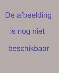 PW-470 Profieltekening van de grondlagen ten behoeve van de aanplemping van het terrein achter het Haringvliet. Met ...