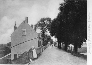 1968-2662 Gezicht op de Nesserdijk, uit westelijke richting.
