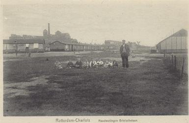 PBK-1058 Noodwoningen aan de Brielselaan. Op het terrein omsloten door de Brielselaan, Wolphaertsbocht en de Bas ...