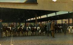 PBK-1983-1053 Koeien en veehandelaren op de Veemarkt.