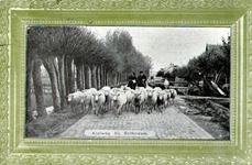 PBK-1987-721 Kudde schapen op de Kleiweg.