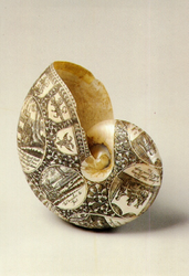 PBK-1991-188 Een versierde schelp uit de verzameling van het Historisch Museum Rotterdam.