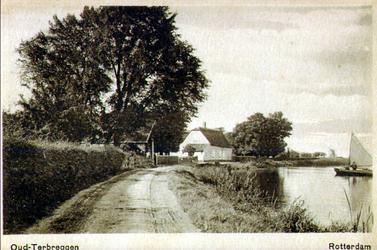 PBK-1993-476 Terbregse Rechter Rottekade, voor de lintbebouwing, het witte huis is de boerderij van I. Bevaart.