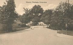 PBK-1993-477 Nieuwe Plantage gezien uit het zuidwesten. Op de voorgrond de Plantageweg.