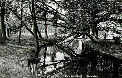 PBK-1993-703 Gezicht op de vijver in Park Rozenburg.