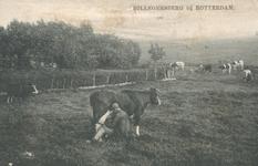 PBK-2003-111 Een boer die zijn koeien melkt in een weiland in Hillegersbeg.