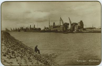 PBK-2006-251 Overzicht van de Waalhaven, vanaf Charlois. Op de achtergrond schepen van de Holland-Amerika Lijn en de ...