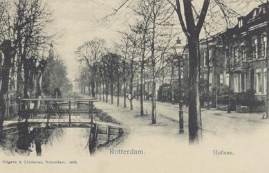 PBK-2880 De Hoflaan, uit het zuiden. Links een houten bruggetjes over de sloot en op de achtergrond, boven de bomen, de ...