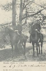 PBK-5443 Twee politieagenten te paard in het Park aan de Westzeedijk.