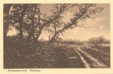 PBK-8694 Schapengorsduin. Rockanje.