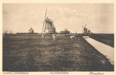 PBK-8700 Plaats Lommerrijk, Hillegersberg, Straatweg. Molens en koeien.
