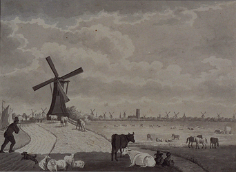 III-77 Gezicht op Rotterdam en de weilanden ten westen van de Rotterdamse Schie (Blijdorp).