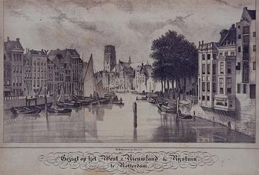 VII-196 Gezicht op het West-Nieuwland, de Rijstuin en de Kolk.