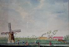 XXXI-268-1 Het huis Polderburg en watermolen aan de Kerklaan.