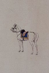 XXXIII-267-02-4 1913Herdenking van de 100-jarige onafhankelijkheid.Ontwerp in costuum in de optocht:- Paard.