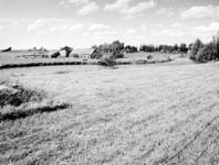 1972-1588 Boerderij ten westen van de Rotte en boezemvaart in de Boterdorpse polder. Achter de boerderij werkzaamheden ...