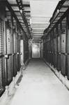 1974-1709-TM-1712 Gezichten in het dierenopvangcentrum van de Dierenbescherming Rotterdam aan de Abraham van ...