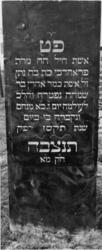 1974-4906 Een grafzerk op de Israëlitische begraafplaats aan het Toepad, rij 12 nummer 33.