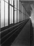 1978-3639 Transportband en buisleidingen langs de uit ramen bestaande buitenwand. Fabriek van Van Nelle aan de Van ...