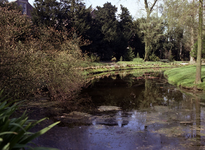 1981-1971 Bomenpark Arboretum Trompenburg aan de Honingerdijk.