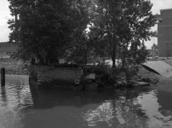 1981-821 Zuidelijke hoofd van de vroegere Boslandsbrug aan het Buizengat.