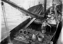 1986-2604-TM-2611 Aanvoer van mosselen bij de Zeevischmarkt aan de Blaak.Van boven naar beneden:-2604 t/m -2611
