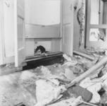 1993-645 Een combinatie van zeer zware storm en springvloed veroorzaakt een watersnoodramp in Zeeland en delen van ...
