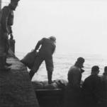 1993-651 Een combinatie van zeer zware storm en springvloed veroorzaakt een watersnoodramp in Zeeland en delen van ...