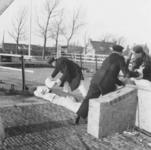 1993-652 Een combinatie van zeer zware storm en springvloed veroorzaakt een watersnoodramp in Zeeland en delen van ...