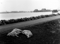 1993-784 Een combinatie van zeer zware storm en springvloed veroorzaakt een watersnoodramp in Zeeland en delen van ...