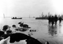 1993-839 Een combinatie van zeer zware storm en springvloed veroorzaakt een watersnoodramp in Zeeland en delen van ...