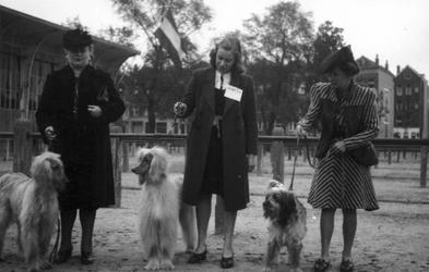 1997-1864 Op de Veemarkt staan dames met honden. Voor een hondenshow.