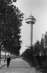 1997-969 Parkhaven met op de achtergrond de Euromast in aanbouw.